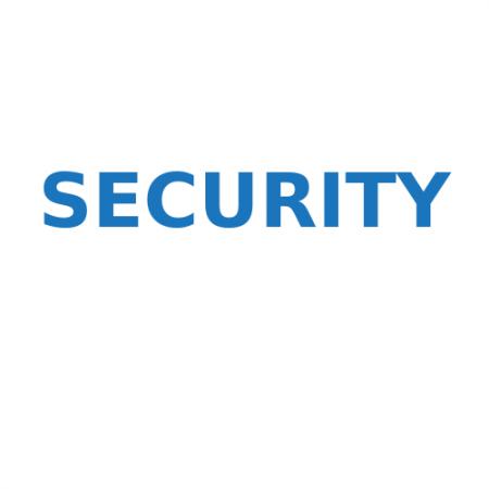 Безопасность программного обеспечения